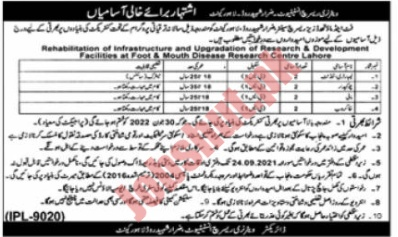 Veterinary Research Institute Lahore jobs advertisement