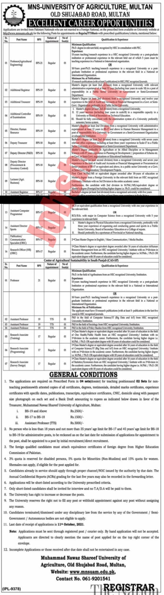 University Of Agriculture jobs advertisement