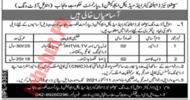 Special Education Healthcare and Medical Education department jobs advertisement